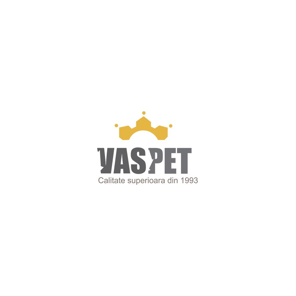 creare-logo-vaspet-vrancea