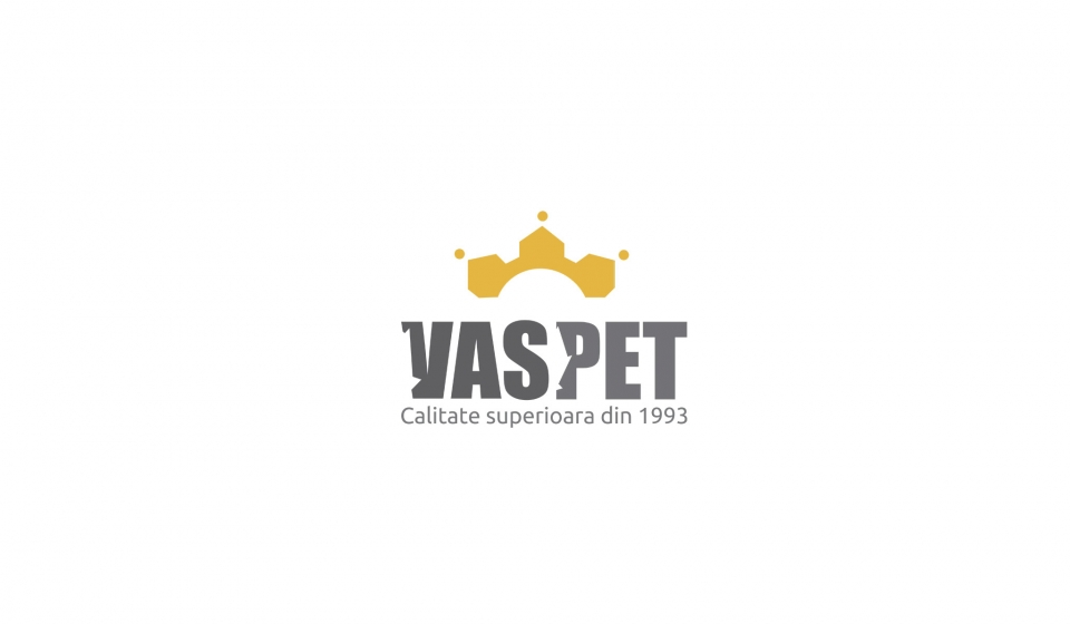 creare-logo-vaspet