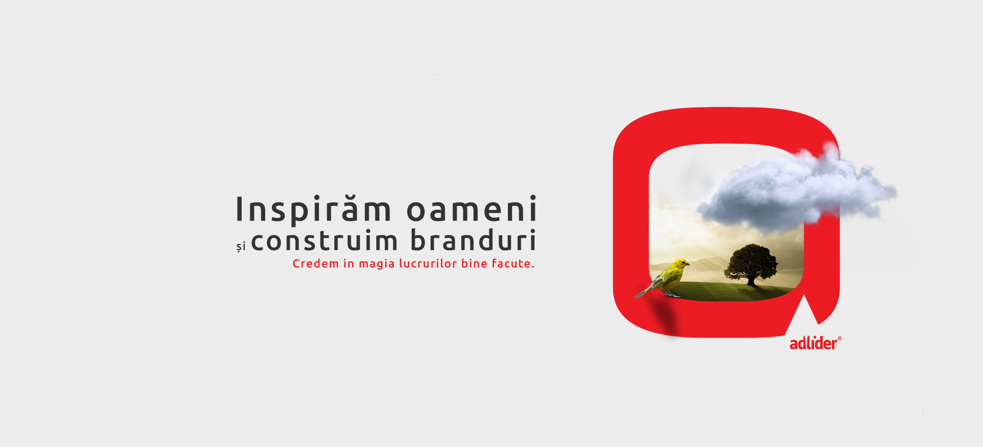 servicii-branding